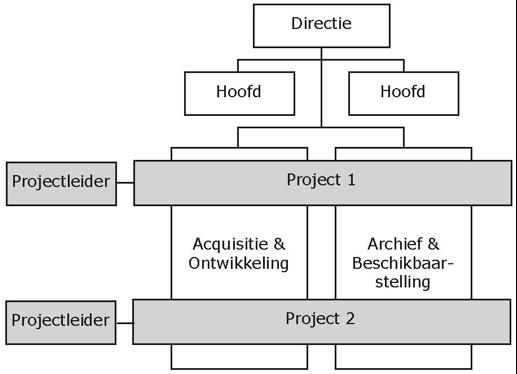 Projecten georganiseerd volgens het matrix model.
